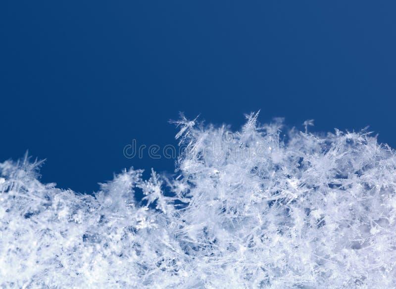 Зима сценарная снежинок стоковые изображения rf