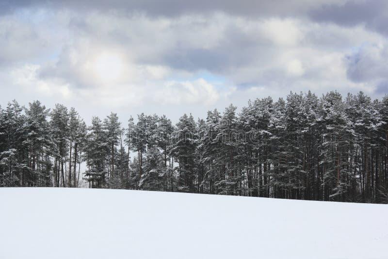 зима температуры России ландшафта 33c января ural стоковое изображение rf