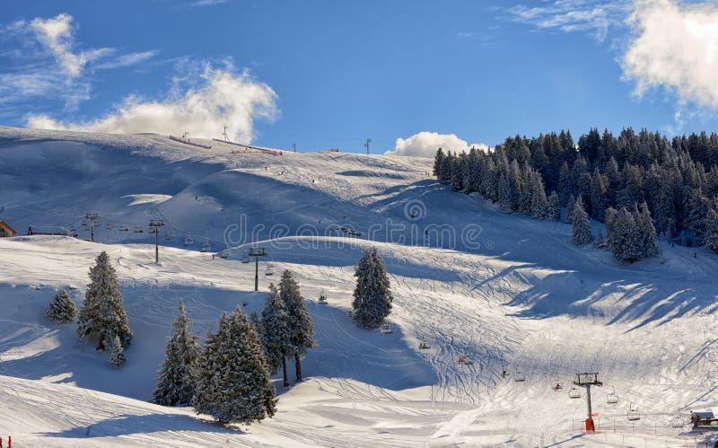 зима Украины горы ландшафта dragobrat стоковые изображения rf