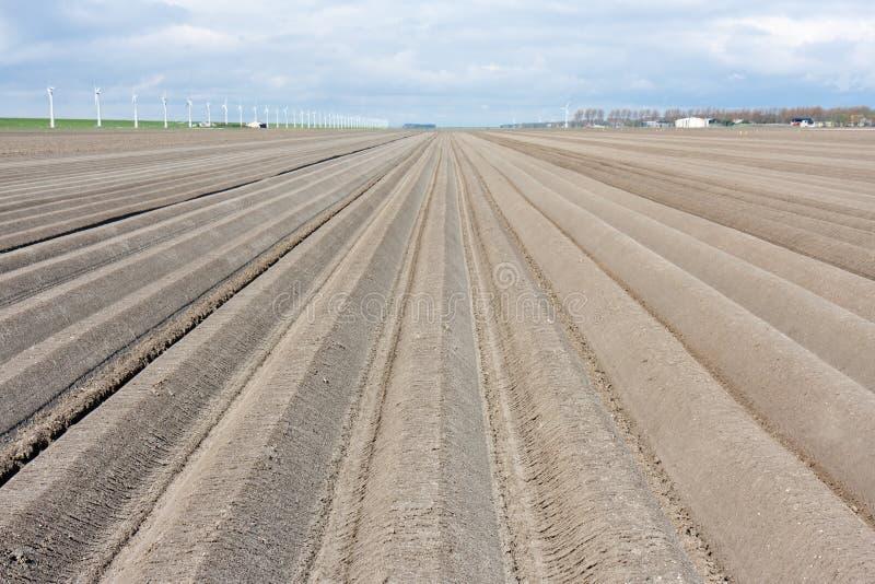 зима чуть-чуть весны сельскохозяйствення угодье стоковое фото