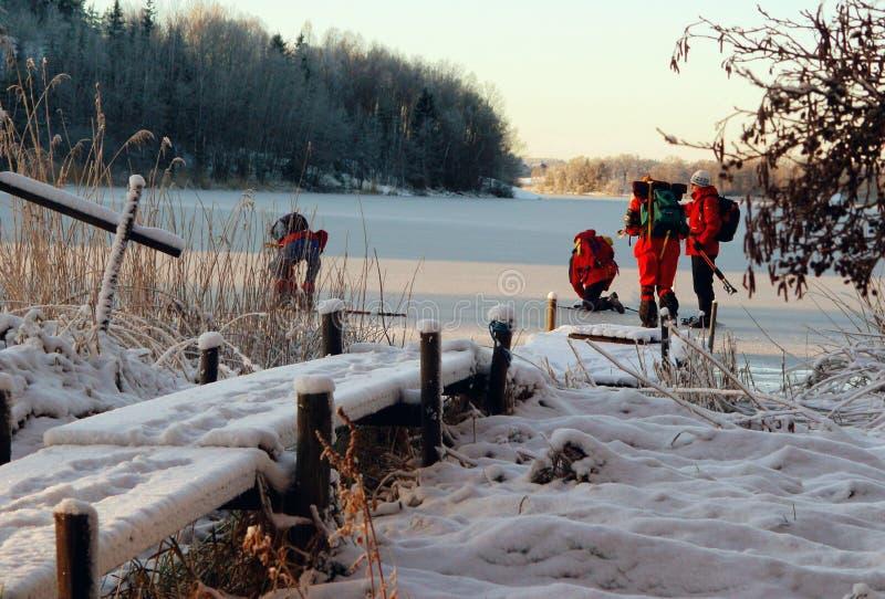 зима 2 стоковое изображение rf