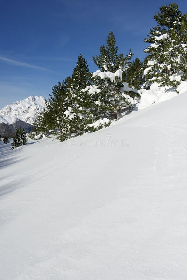 Download Зима стоковое фото. изображение насчитывающей сценарно - 37928668