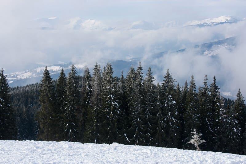 Download Зима стоковое изображение. изображение насчитывающей ландшафт - 37930199