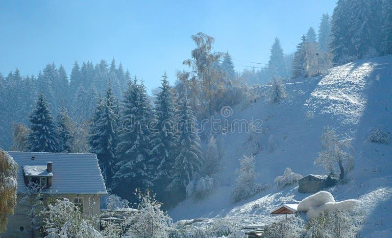 1 зима стоковое фото rf