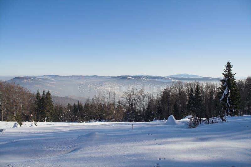 Download зима стоковое фото. изображение насчитывающей пуща, гора - 650370
