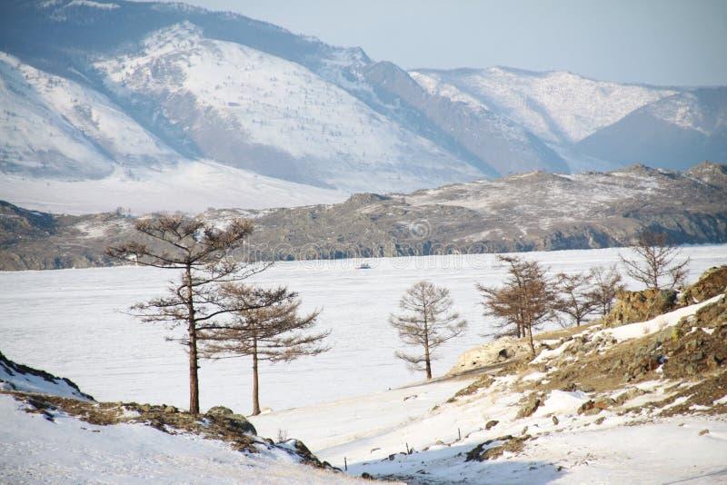 зима baikal стоковое изображение rf