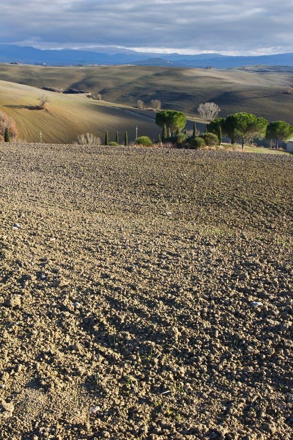 зима orcia ландшафта d Италии тосканская val стоковые изображения rf