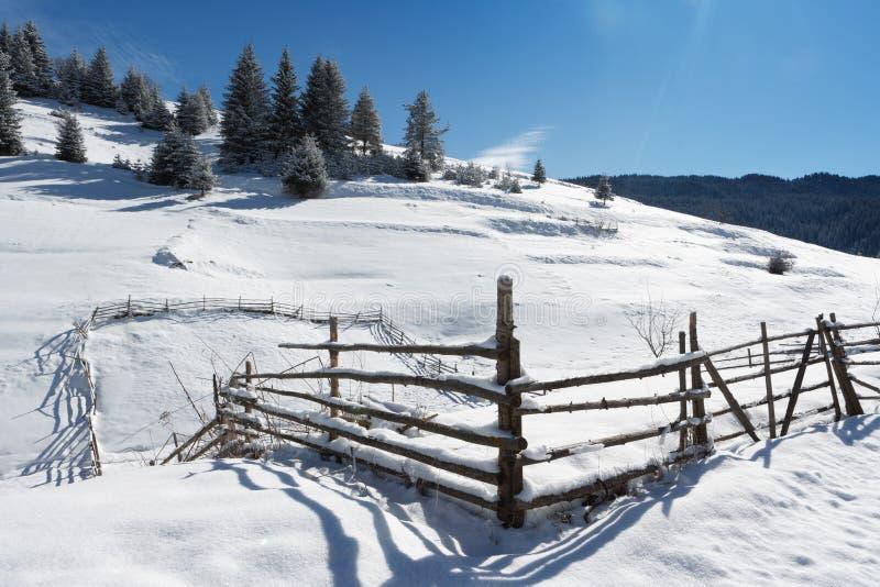 зима rhodope горы стоковое изображение rf
