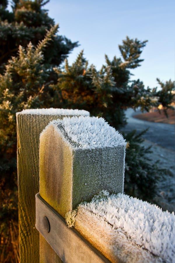 зима stargate пруда стоковое фото rf