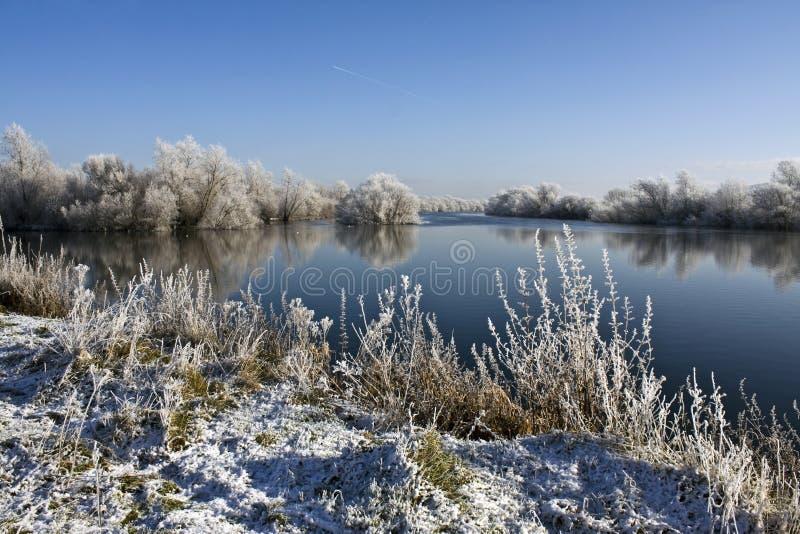 зима suir реки стоковое изображение