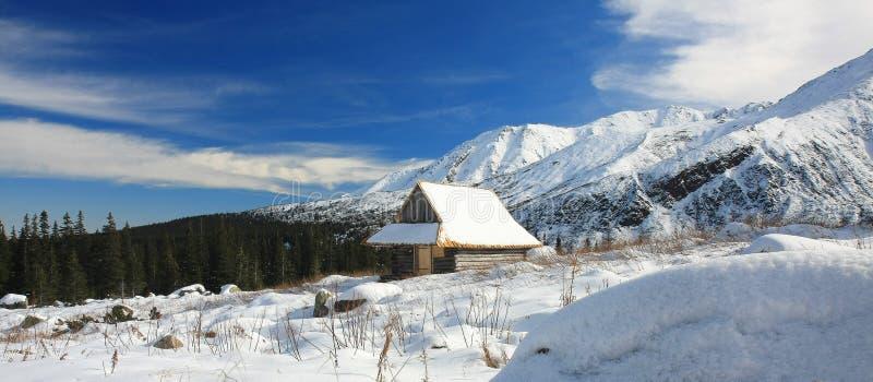зима tatra стоковое фото