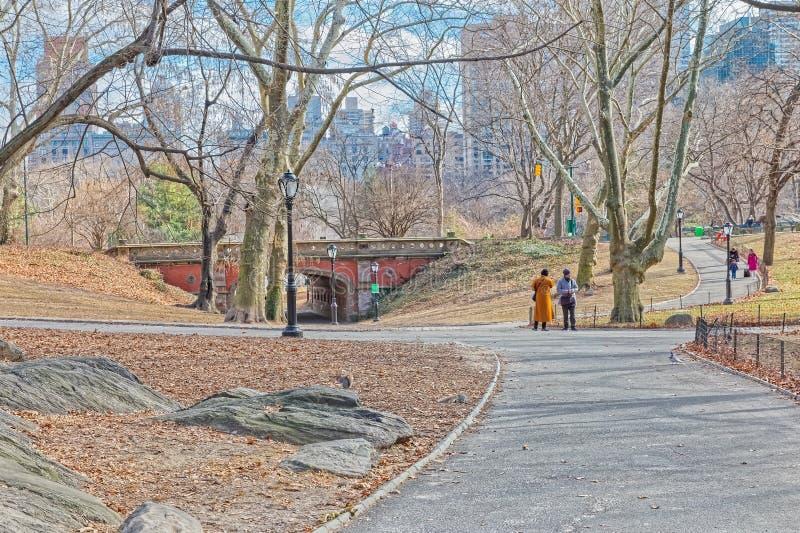 Зимнее время моста свода Driprock центрального парка Нью-Йорка стоковые изображения rf