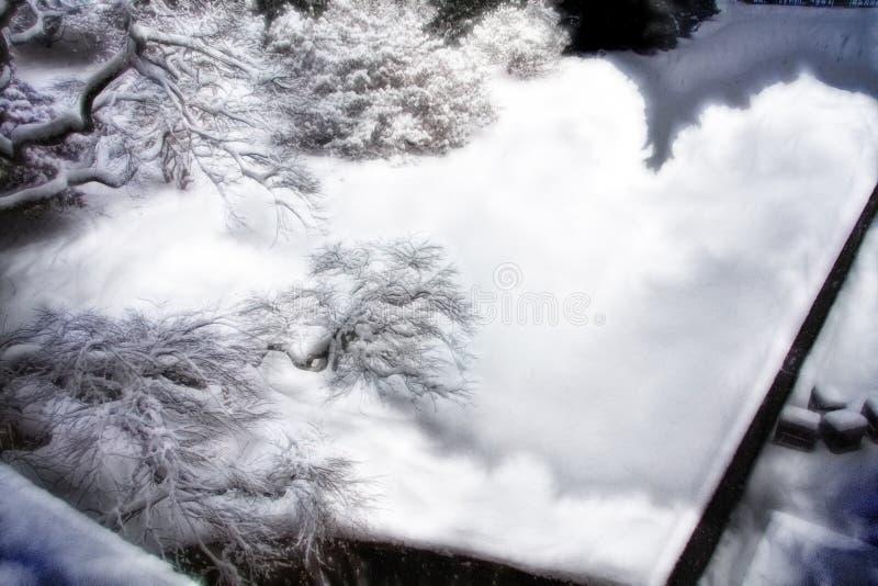 Зимнее настроение стоковые фотографии rf