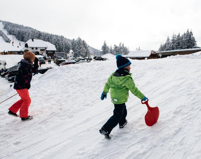 Зимний день с снегом и счастливые дети взбираясь sledding склоняют стоковое фото