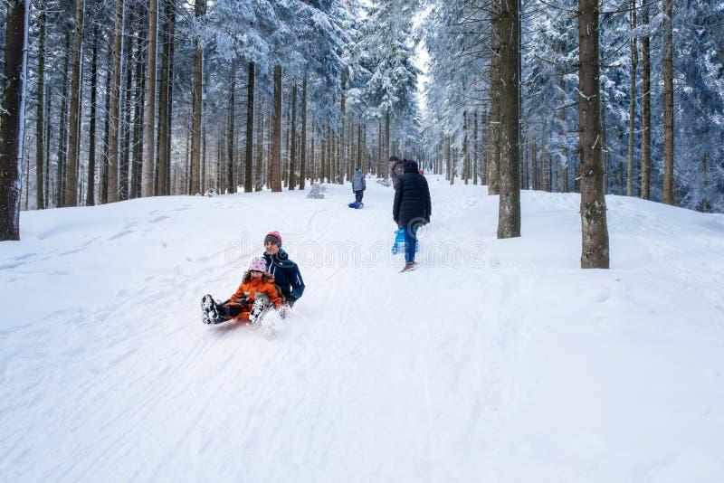 Зимний день с снегом и счастливым sleighing матери и doughter стоковая фотография