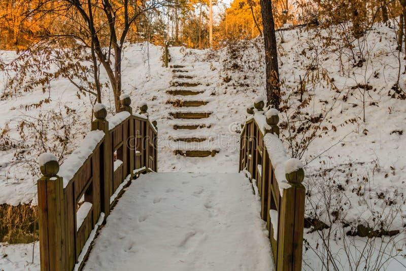 Зимний ландшафт деревянного footbridge стоковая фотография