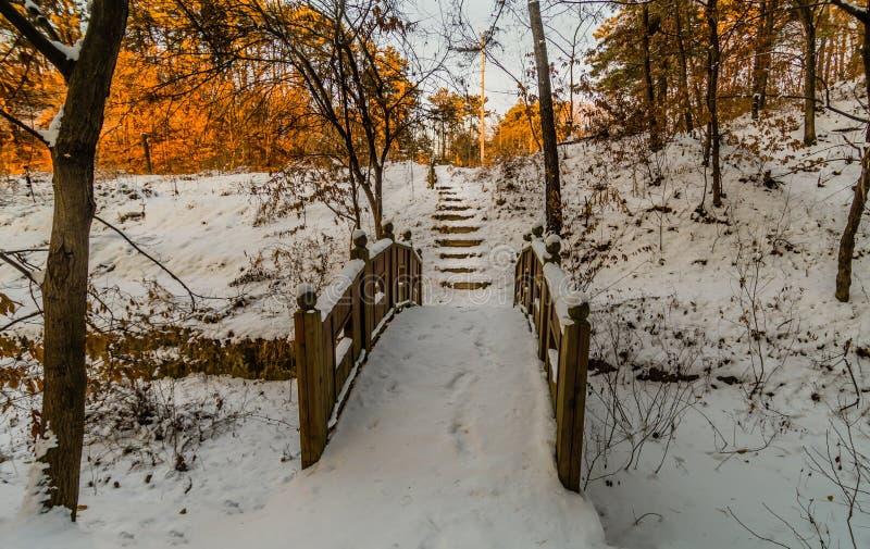 Зимний ландшафт деревянного footbridge стоковые фотографии rf