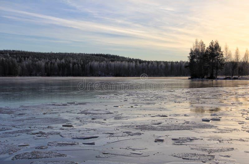 Зим лес льда озера Outdoors стоковая фотография