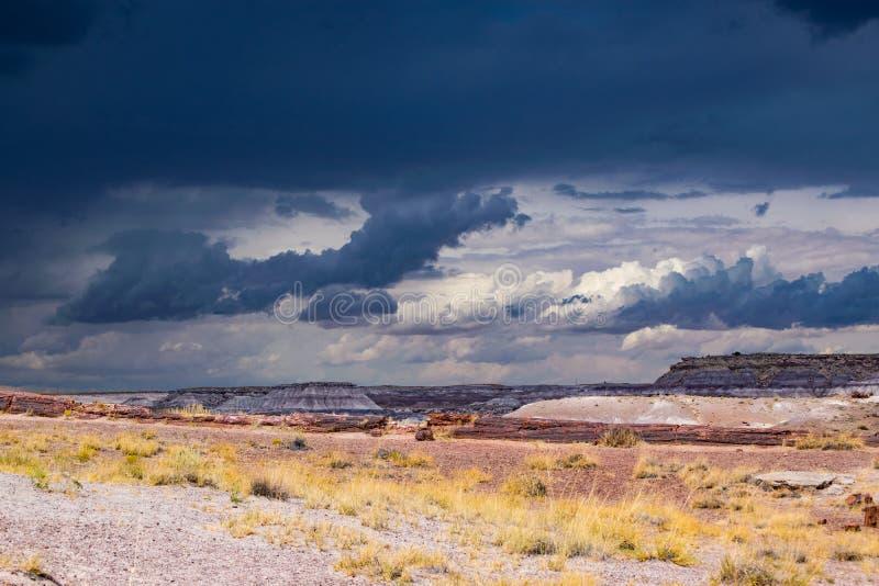 Злые грозовые тучи над живописной пустыней Аризоны стоковое изображение rf