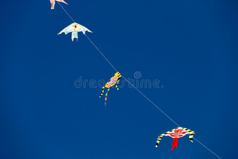 Змеи голубого неба и цвета стоковые фото