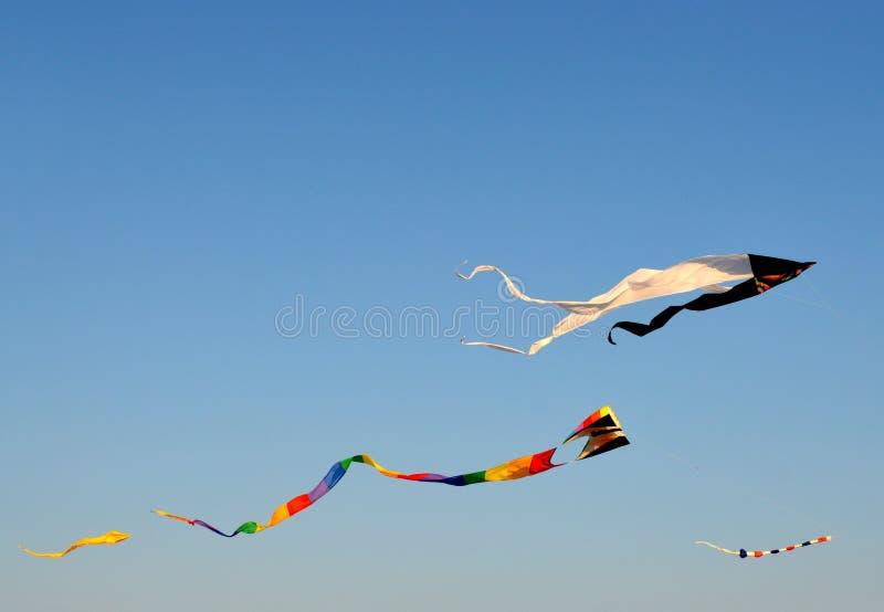 Змеи летая на пляж стоковое изображение