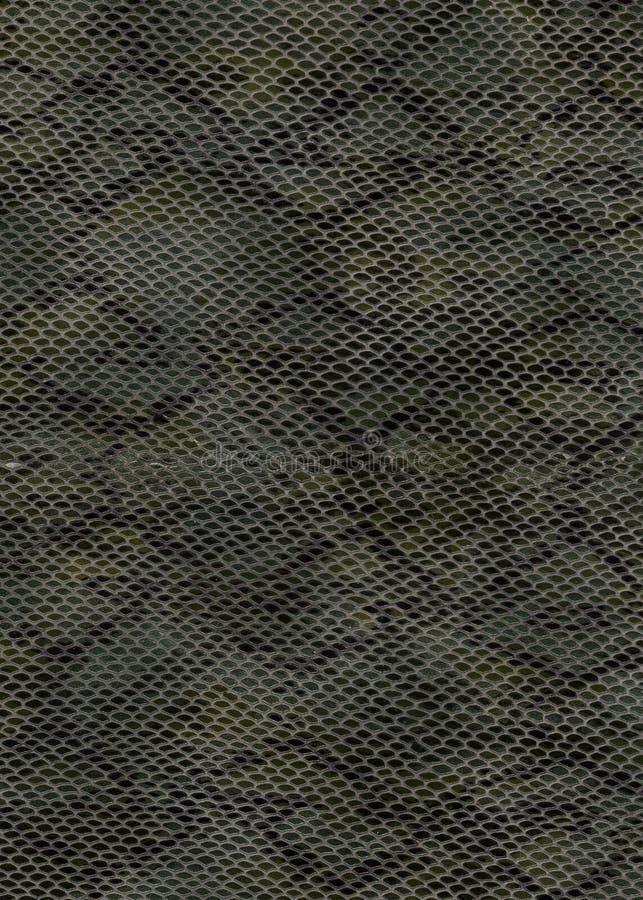 змейка кожи предпосылки стоковые изображения rf