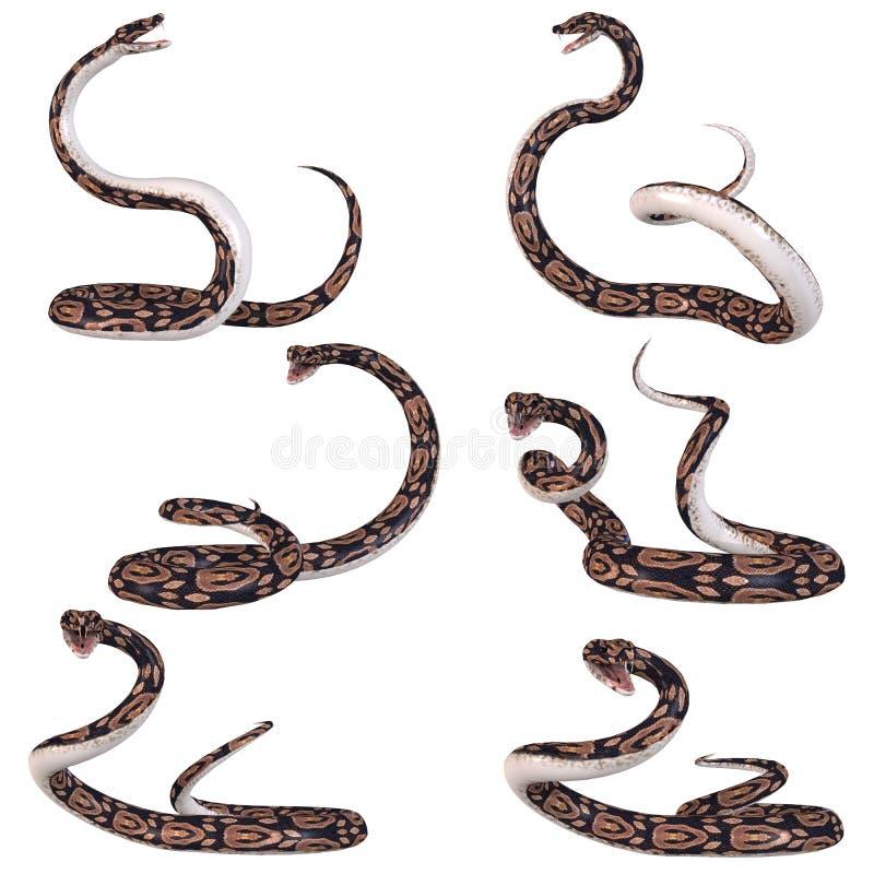 змейка питона шарика иллюстрация штока