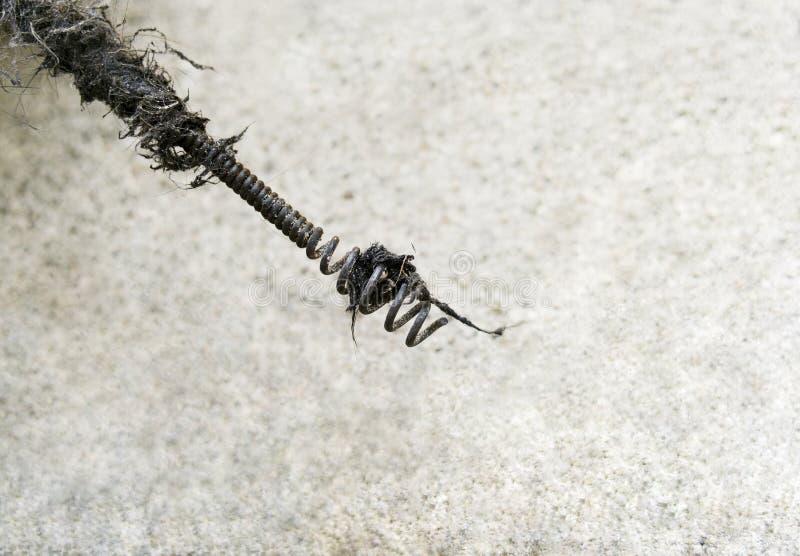 Змейка стока кабеля стоковые изображения