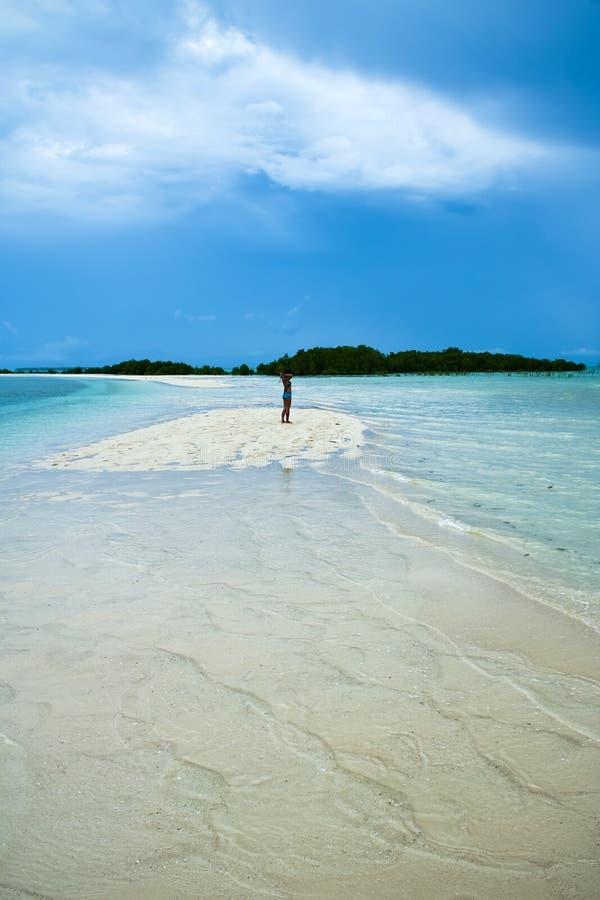 змейка philippines острова пляжа palawan стоковая фотография rf
