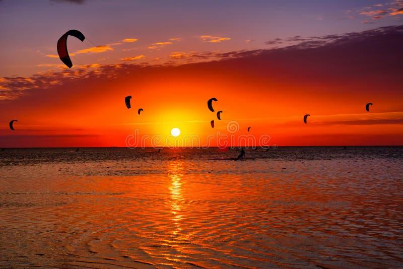Зме-серфинг против красивого захода солнца Много силуэтов набора стоковое фото