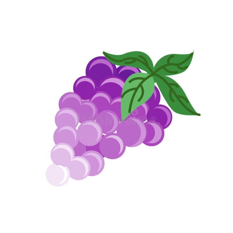 Знак и символ вектора значка виноградин изолированные на белой предпосылке бесплатная иллюстрация