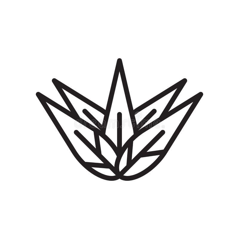 Знак и символ вектора значка столетника изолированные на белой предпосылке иллюстрация штока