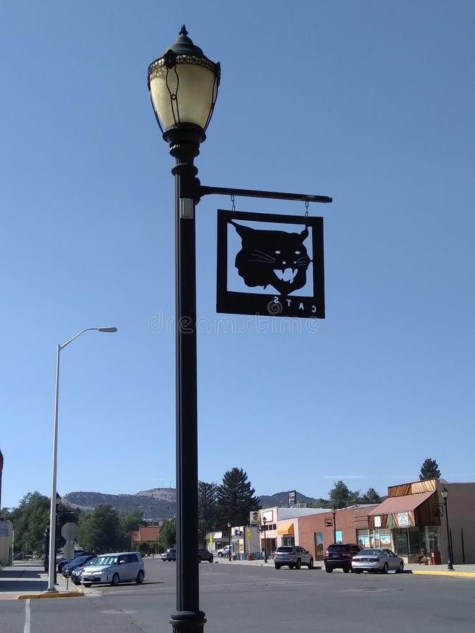 Знак кугуара на фонарном столбе в городском Thermopolis стоковые изображения