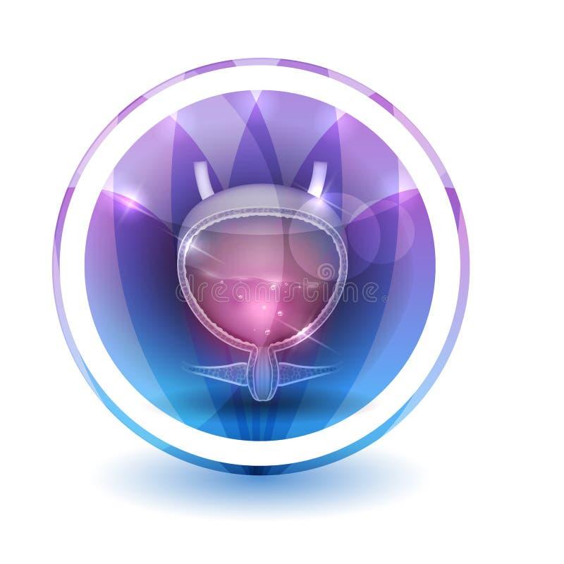 Знак мочевыделительного пузыря иллюстрация штока