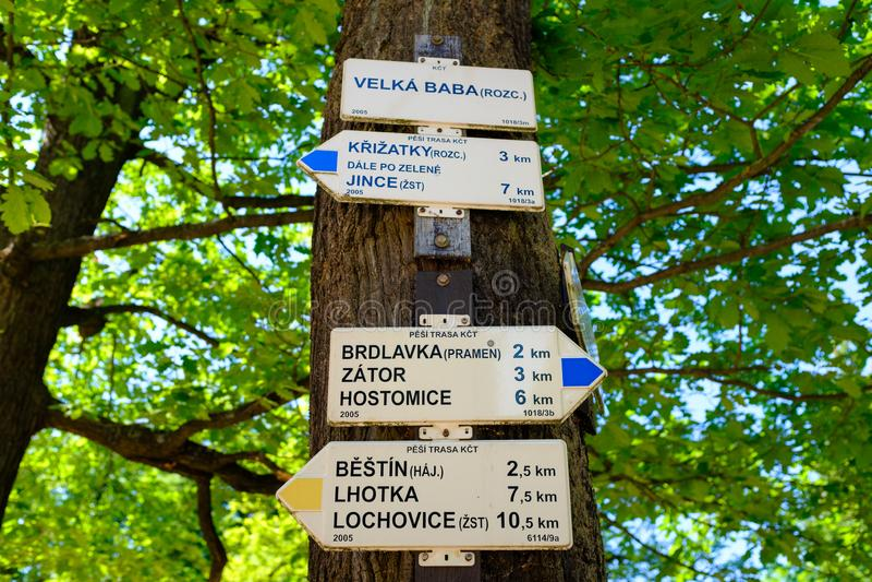 Знак направления на стволе дерева стоковые фото