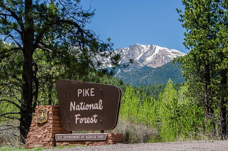 Знак национального леса Pike стоковое фото rf