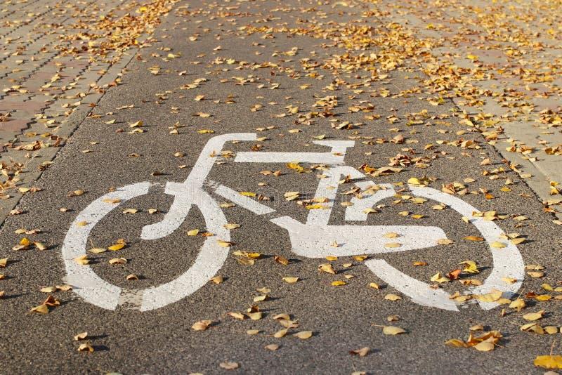 Знак путь велосипеда взбрызнутый с листьями упаденными осенью Дорожные разметки на мостоваой тротуара для того чтобы отделить дви стоковое изображение