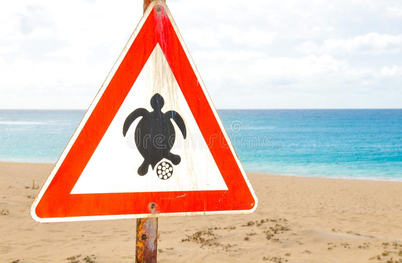 Знак сезона вложенности черепахи на пляже стоковое фото