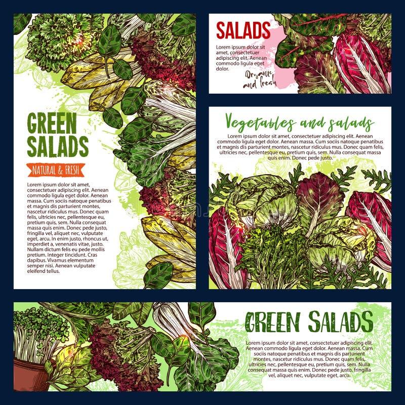 Знамена зеленых цветов лист и овоща салата иллюстрация вектора