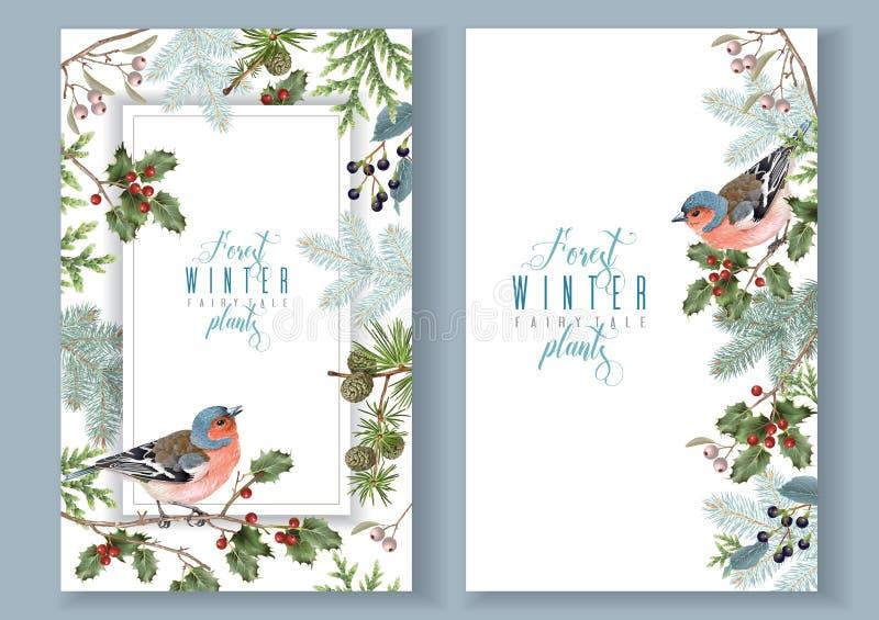 Знамена зимы птицы бесплатная иллюстрация