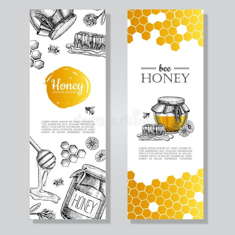 Знамена меда вектора нарисованные рукой Детальным illust выгравированное медом иллюстрация вектора