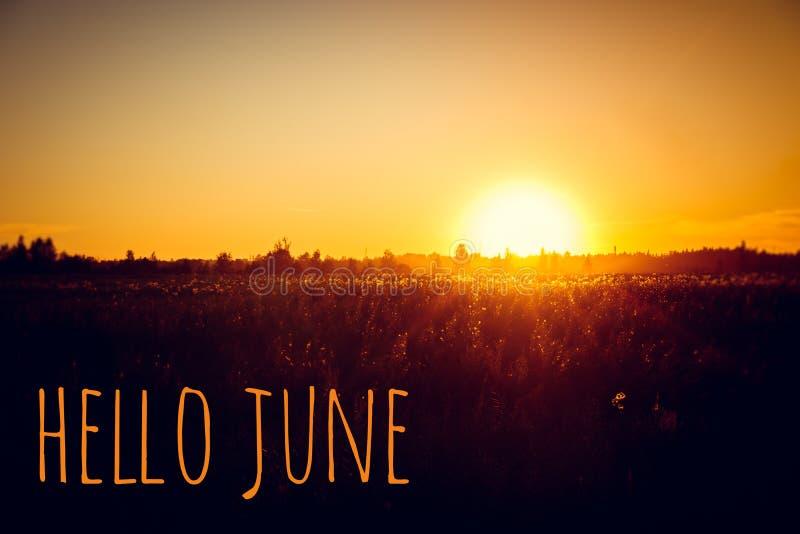 Знамя здравствуйте июнь Текст на фото Отправьте SMS здравствуйте июню Новый месяц Новый сезон Летний месяц Текст на фото захода с стоковое изображение