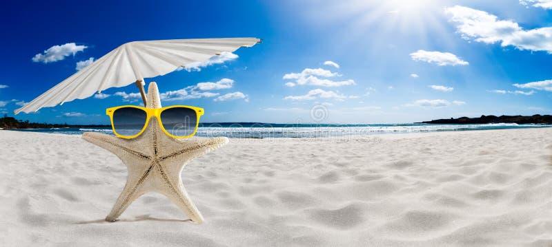 Знамя концепции летнего отпуска, морская звёзда на старом деревянном поле, промежутке времени стоковое изображение