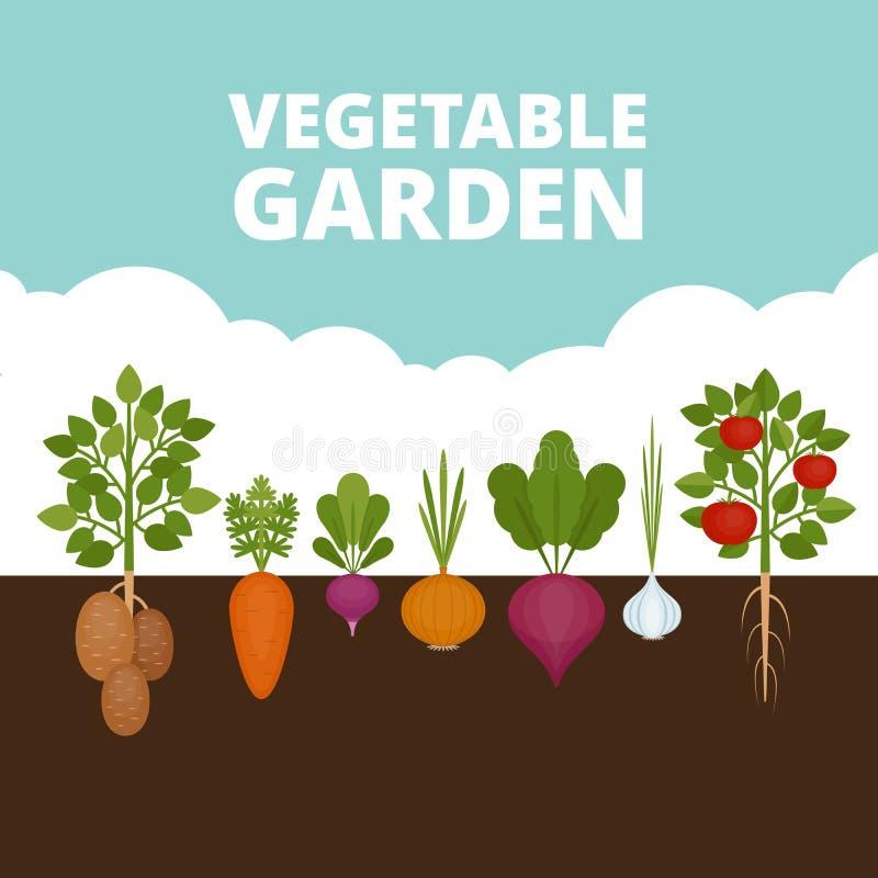 Знамя огорода Органическая и здоровая еда Плакат с r иллюстрация вектора