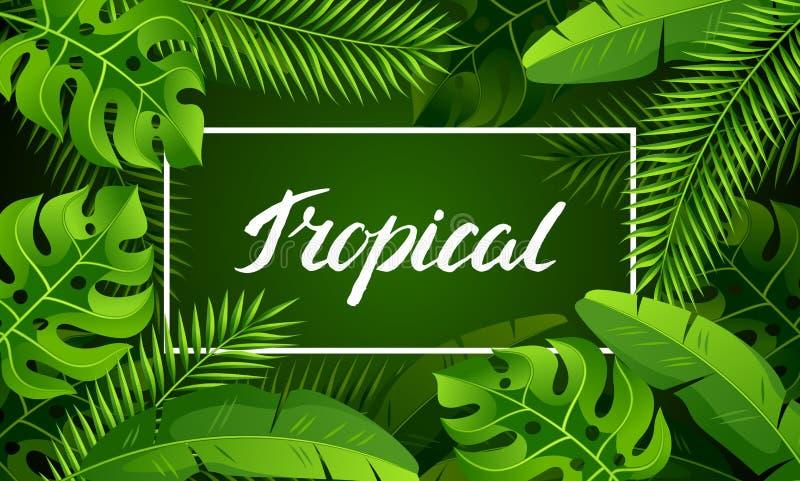 Знамя с тропическими листьями ладони Экзотические тропические заводы Иллюстрация природы джунглей иллюстрация вектора