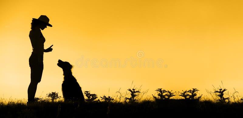 Знамя тренировки собаки стоковая фотография
