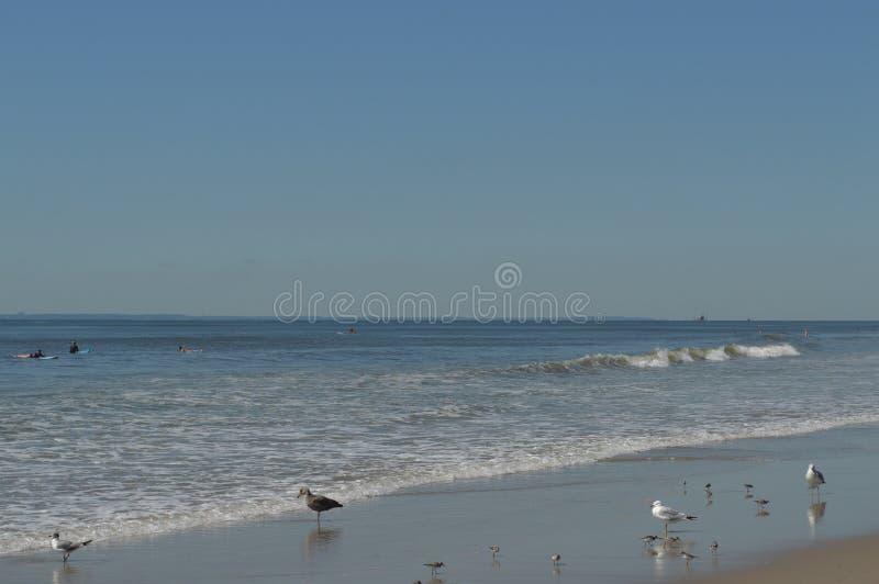 Значительно rockaway океан стоковая фотография