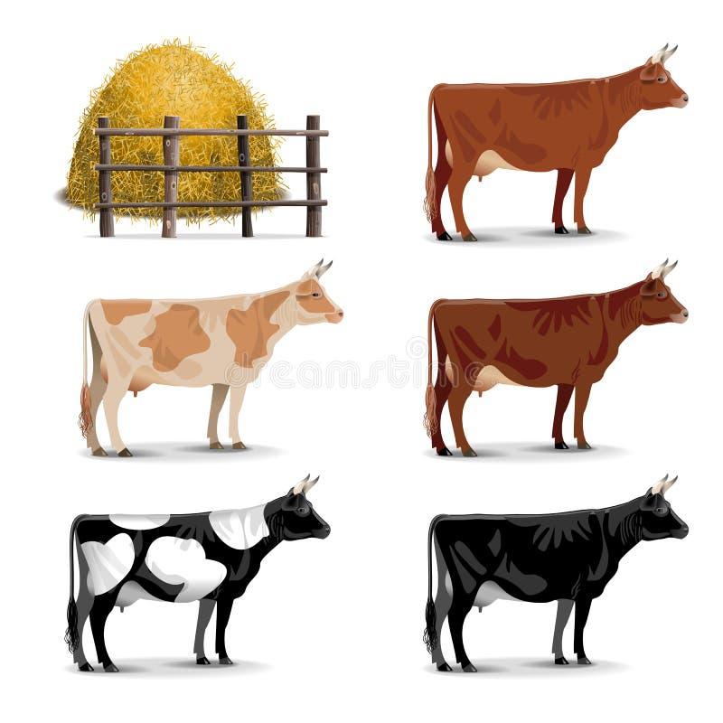 Значки коровы вектора бесплатная иллюстрация