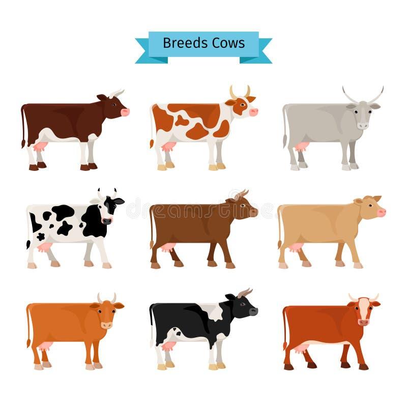 Значки коровы плоские иллюстрация вектора