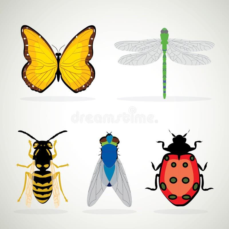 Значки насекомых реалистические покрашенные декоративные бесплатная иллюстрация